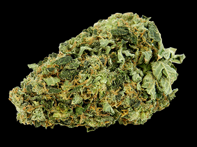 INDICA - Graines de Cannabis
